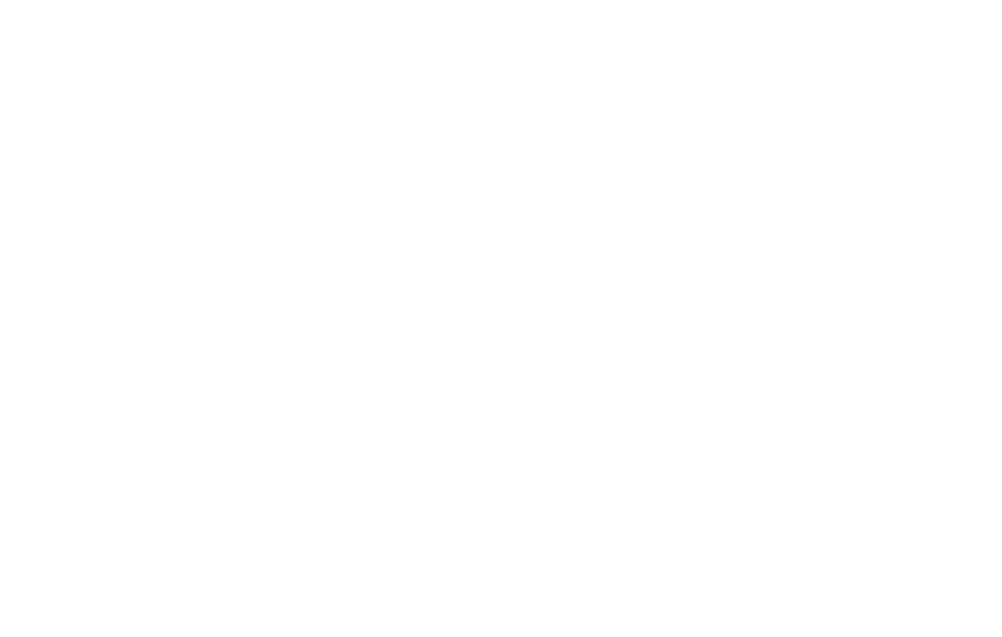 Dream! Plan! Success!
